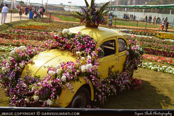 Ahmedabad Flower show 2016