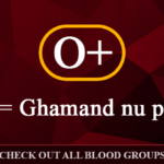 Honest Gujarati Meaning Of Your Blood Group