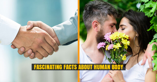 10 Fascinating Facts about Human Body | We Bet You Did Not Know About It