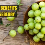 Health Benefits of Gooseberry (Amla)