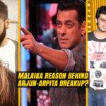 Breakup between Arjun Kapoor and Salman Khan's Sister
